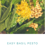 easy basil pesto